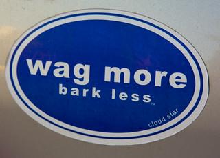 Walk And Wag Dog Walk Emerson Park New York
