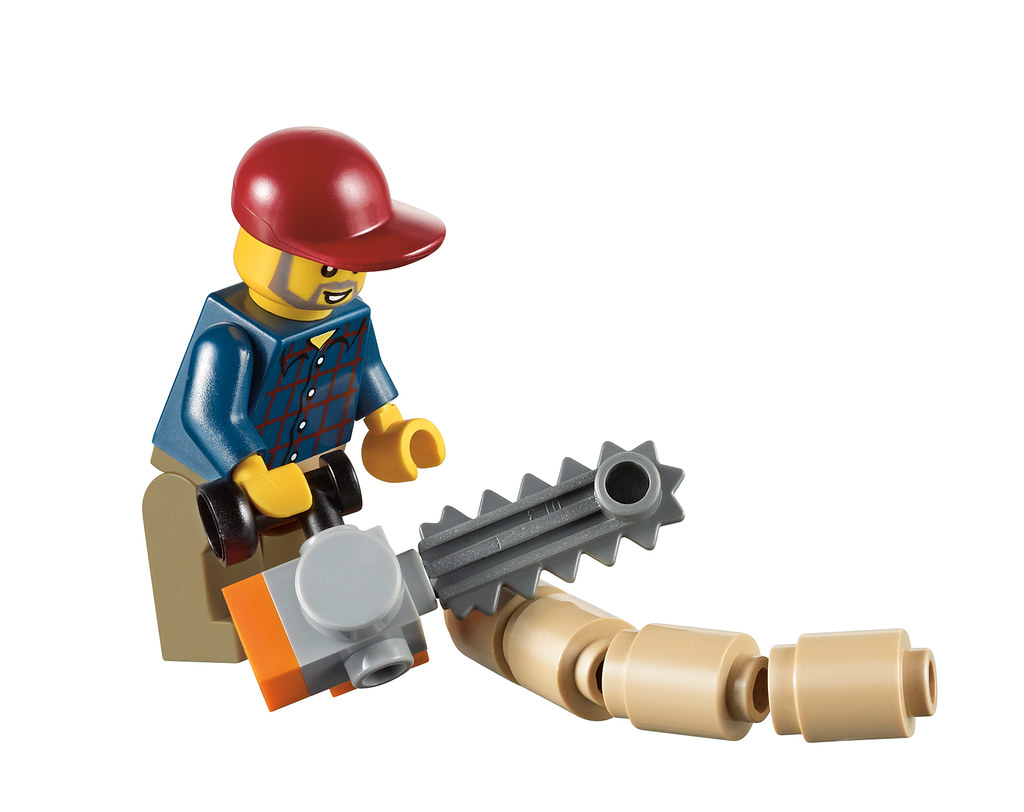 10229 Winter Village Cottage (23) | New LEGO set due out ...