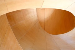 Frank Gehry's Staircase 9