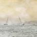 Painterly - Round the Island Race