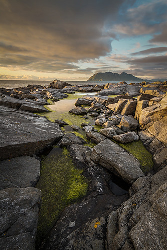 Green Pool | by Jens Inge Ringstad
