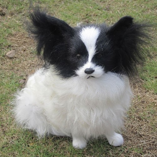 Adorable Papillon Stuffed Dog Puppy Toy Two Colors Flickr