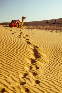 Thar Desert, Rajasthan State, India. | by Flash Parker
