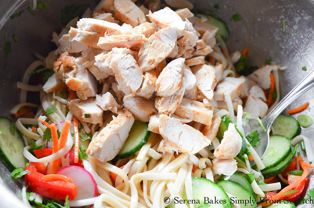 Asian-Noodle-Chicken-Vegetable-Salad-Chili-Scallion-Oil-Chicken.jpg