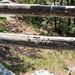 Minnewaska State Park - Wawarsing, NY - 2012, May - 17.jpg