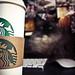 Starbucks iCat