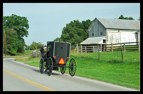 Off to town in Ohio's Amishland | by sjb4photos