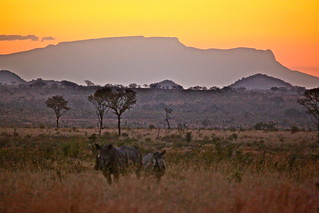 African Dreams | by jurvetson