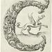Letter 'C' (Jan Chrystian Bierpfaff + Jeremiasz Falck, 1656)
