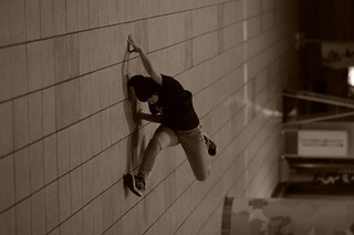 Wall crawler | by Andrew W.....