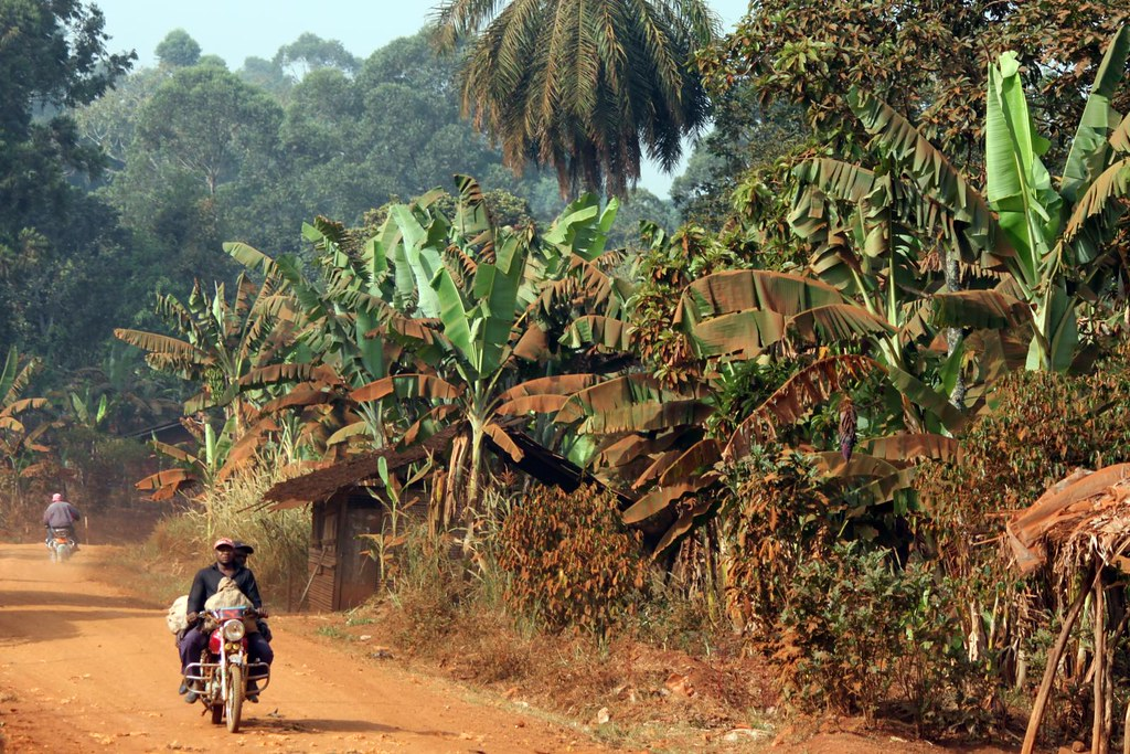 Tb >> Cameroon landscape: the red dust covers all | The red soil &… | Flickr
