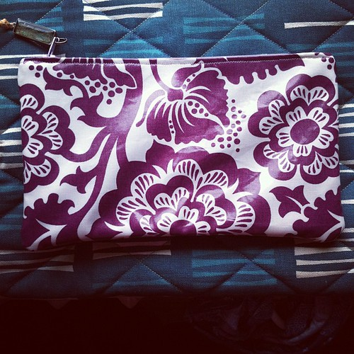 Laminated cotton pouch | by Stitchliterate