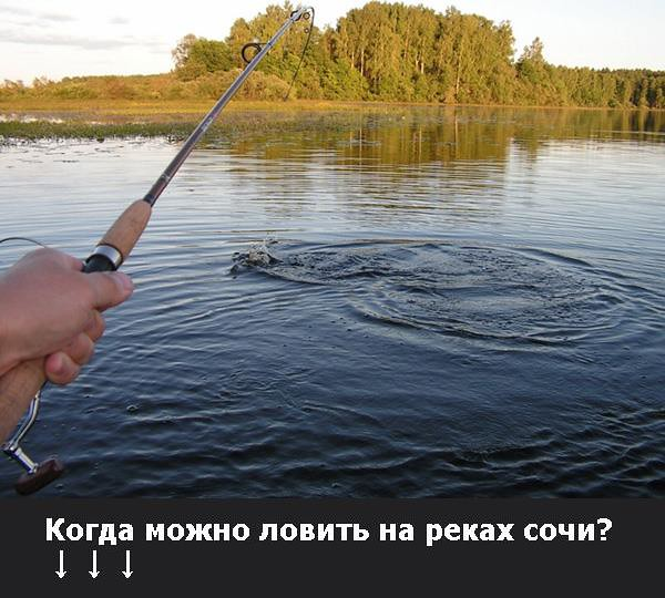 Как ловить усача зимой? Усача запрещают вылавливать Какими снастями, на