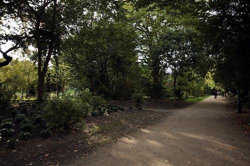 Scorci del giardino di Merrion Square