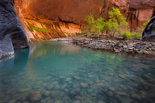 Zion Virgin River Narrows Glow [Explored] | by Alene Davis