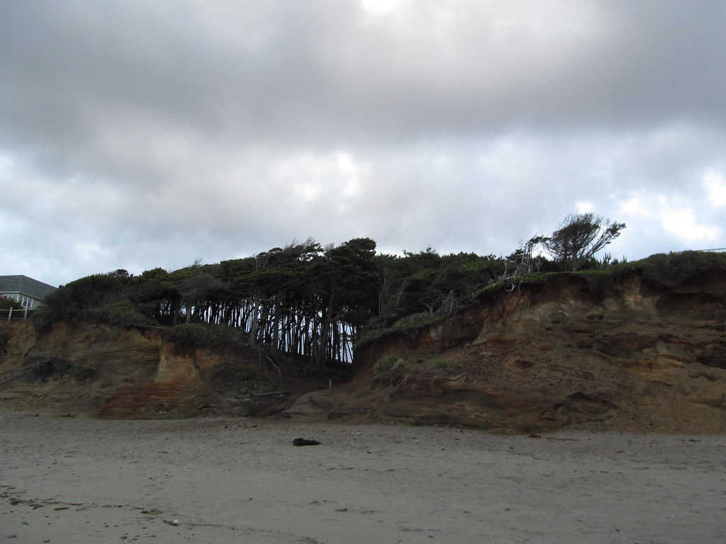 gleneden beach online dating Romantic weekend getaways guaranteed to appeal to lovebirds salishan spa & golf resort — gleneden beach dating back to the 12th century.
