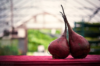 beet love | by SuperDewa