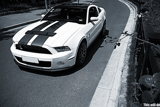 Shelby GT500 | by This will do