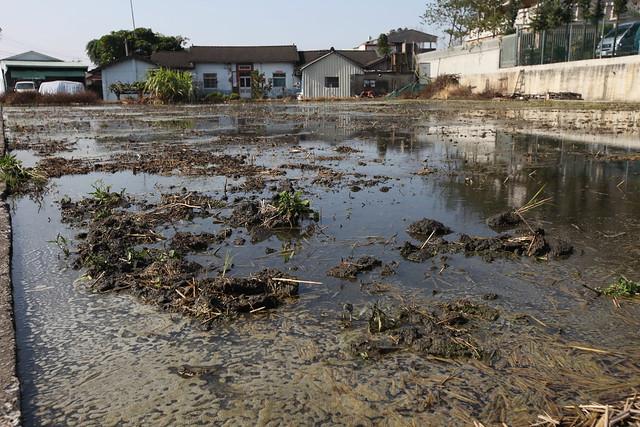 2012.02台中大里區夏田里農地污染 照片來源:柯金源