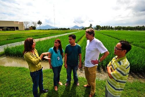 PSTOL1, phosphorus uptake research team members - CHR_0252 | by IRRI Images
