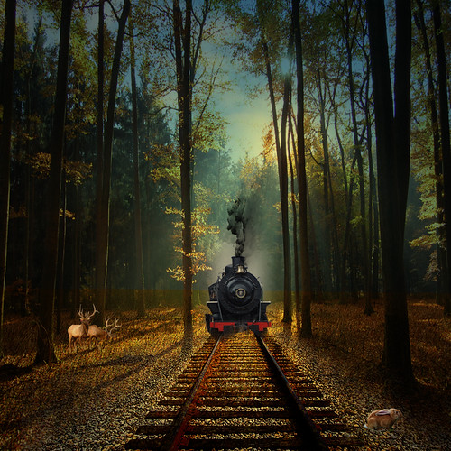 The train from coast to coast | by jaci XIII