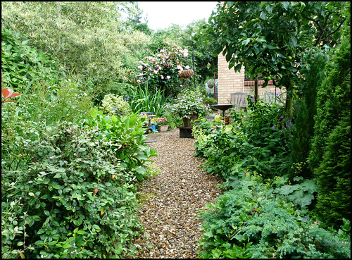Down the garden path.... | by Sandi (VERY busy lady)