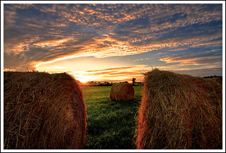 Sunset on the Bales | by Paul Jolicoeur Photography