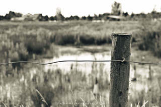 Pond beyond fence | by w.mekwi photography [here & there]