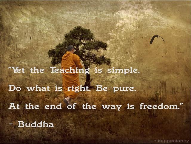 Buddhist Quotes Happiness Buddhist Quotes Happiness