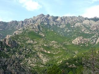Punta di Quercitella depuis la Crête de Livisani