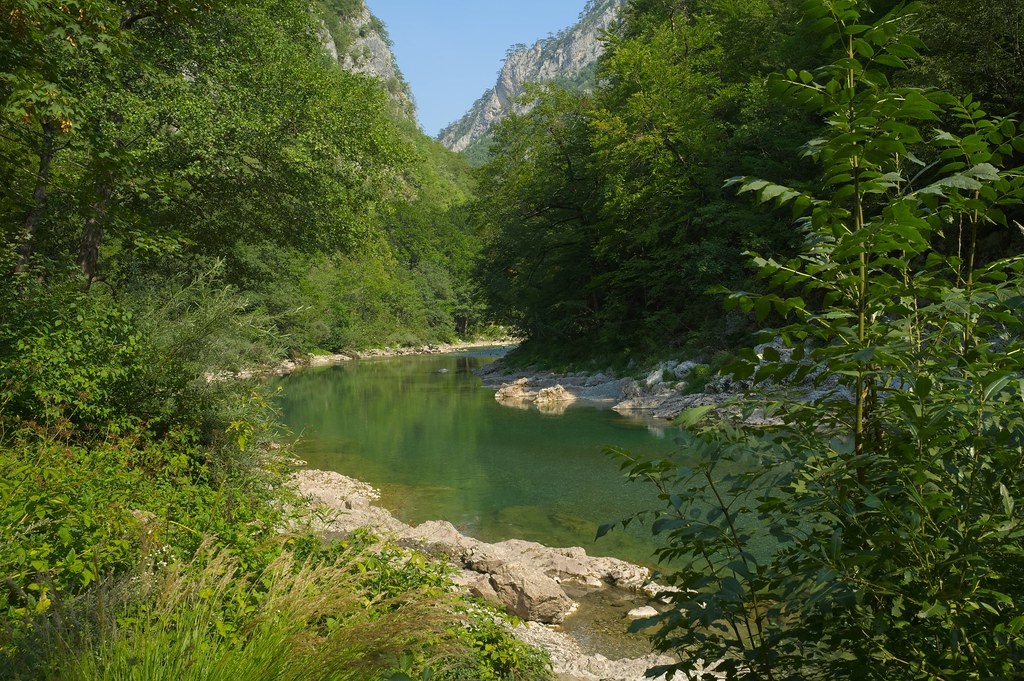 Rivière Tara | Canyon de la rivière Tara, Monténégro ...