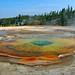 A Yellowstone Creation. By Ian Layzell
