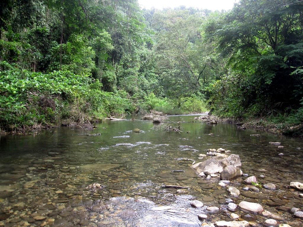 Solomon Islands Papua New Guinea 051 Too Bad No Waterproof Flickr