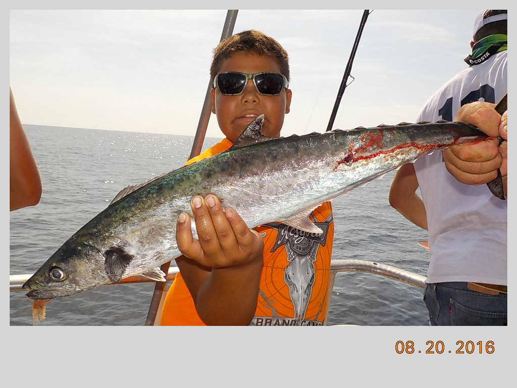 Aug 20 2016 flickr for Deep sea fishing daytona