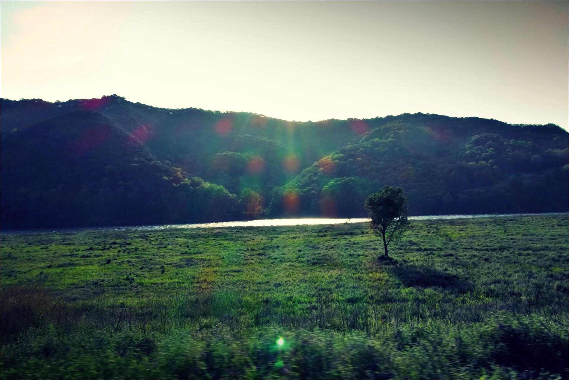 숲-'낙동강 자전거 종주여행'
