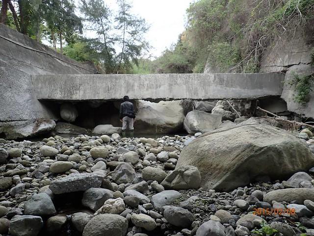 野溪小組踏查所見的巨大水泥階梯。(照片提供:莊詠婷)