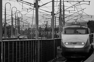 TGV in black and white | by TransportVisions
