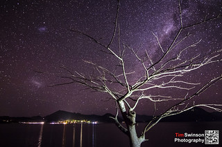 Lake Moogerah Tree | by Tim Swinson | http://timswinson.com