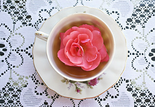 Rose Tea | by Taylor Daniels Photography