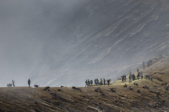 Crater Rim - Ijen East Java_MG_7624