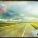 PW_road_texture
