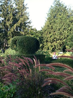 Portsmouth Residents Get Free Day at Green Animals Topiary