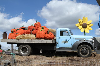 Pumpkinland Truck | by Jim, the Photographer