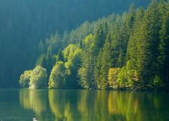 Lago Černé