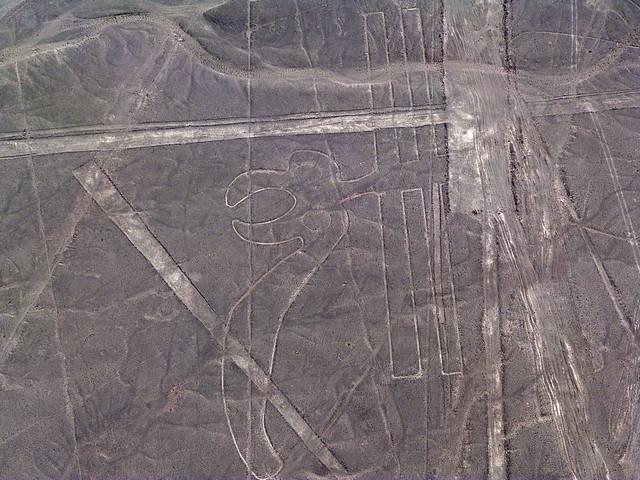Papagayo (Líneas de Nazca a vista de avioneta)