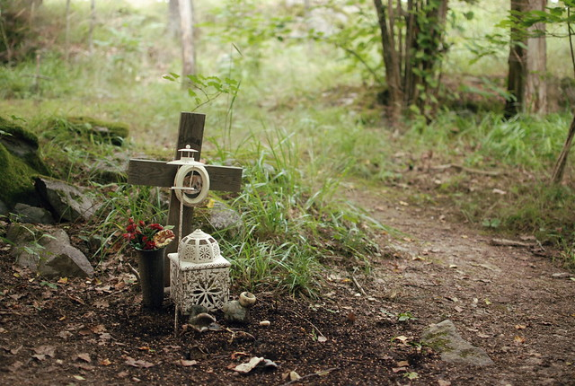 Pet Cemetery Flickr Photo Sharing