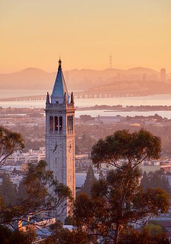 NineSigma and Berkeley-Haas Announce OI Award Winners