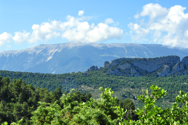 Ein Spaziergang in der Provence: blauer Himmel, Berge, Hügel, wilde grüne Natur ... Foto: Brigitte Stolle