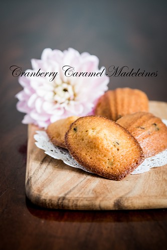 Cranberry Caramel Madeleines 1 | by yuehandicrafts