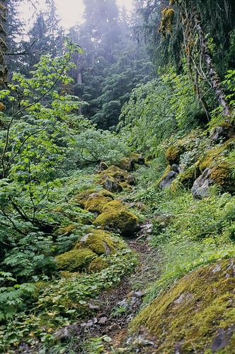 necklace valley trail alpine lakes wilderness